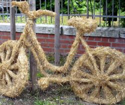 Fahrradtour Region Neustadt